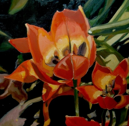 Are the Tulips too Excitable_10x10_oil on belgian linen