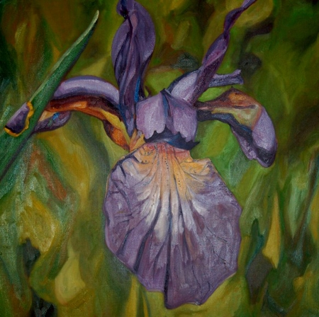 Display Blooms Sublime, 20x20, oil on belgian linen